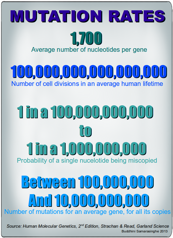 Mutation rates of a given gene